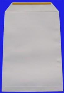poza Plic E4 280*400 offset alb silicon. 110 gr.