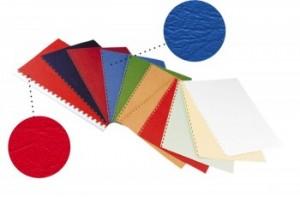 poza Coperta carton imitatie piele 250g/mp, A4,100/top OPUS - alb